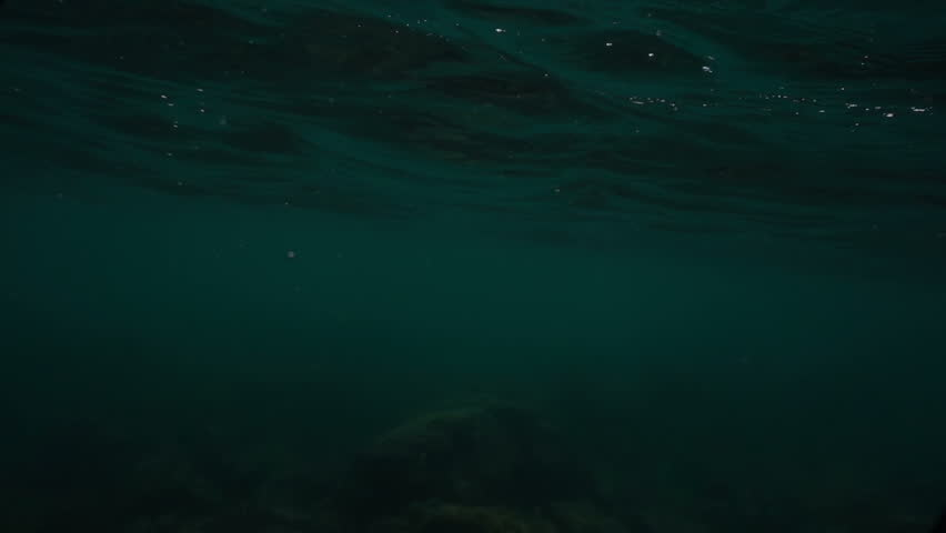 Waves on the ocean. The camera goes under water. Video recorded in slow motion.  | Shutterstock HD Video #31583947