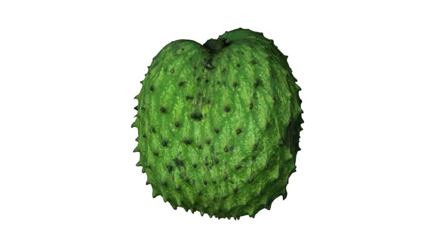 Realistic render of a rotating soursop (graviola) on white background. The video is seamlessly looping, and the 3D object is scanned from a real soursop.