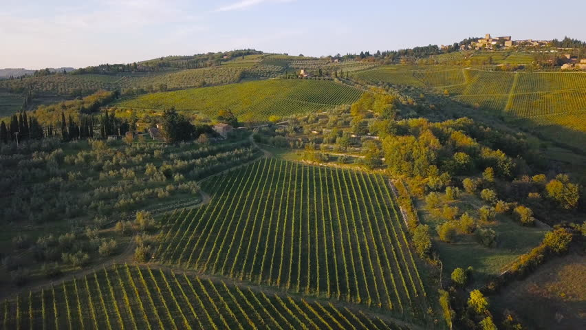 Aerial nature landscape beautiful hills forests fields and vineyards of Tuscany, Italy