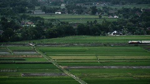 Train across near the rice field in Jogjakarta Indonesia