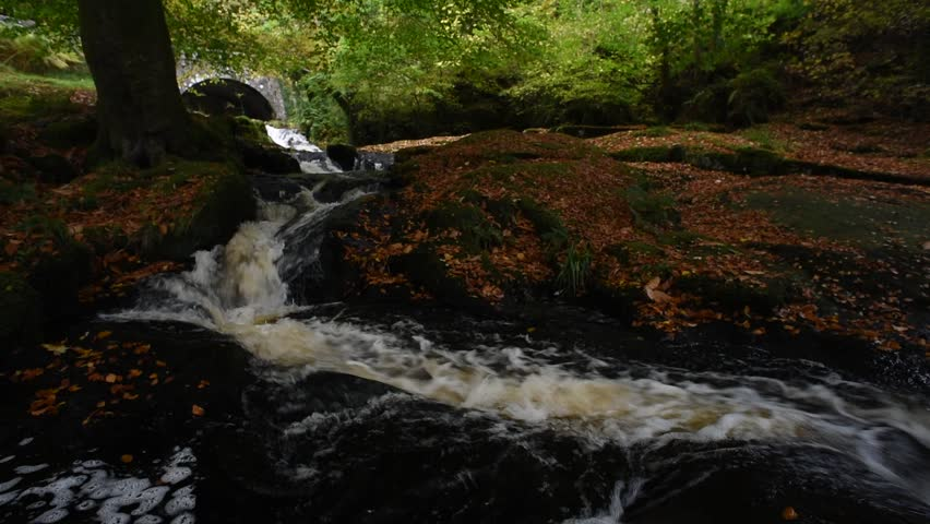 Autumn river in the forest in Wicklow Mountains - Ireland/ Autumn river/ Autumn river cascade in Ireland | Shutterstock HD Video #32045557