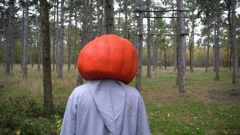 Halloween pumpkin head entity in the autumn forest