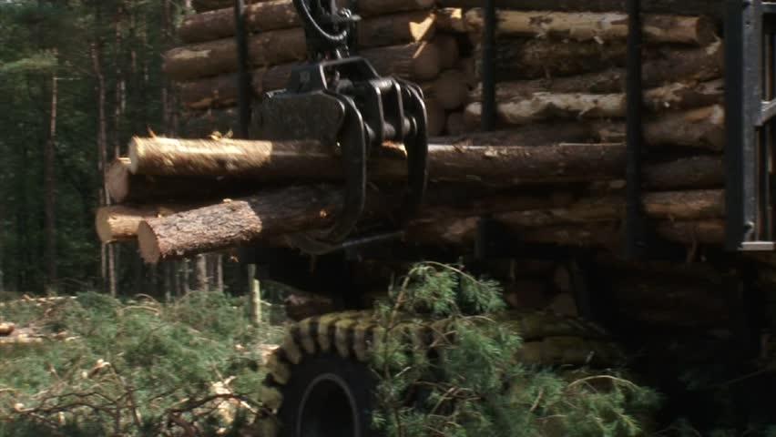 gathering + loading timber on logging truck (valmet 840-3) close up