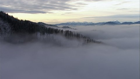 WS AERIAL POV Misty forest in Fischbach Alps / Salzburger Land, Austria