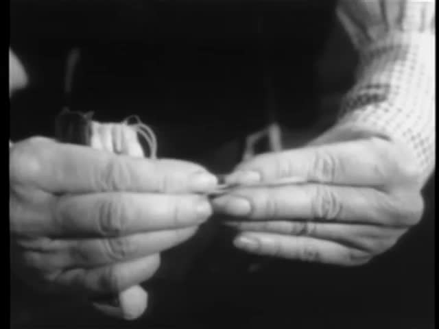 Close-up of woman's hands holding rolled cigarette and pouch