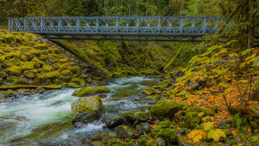 Iron bridge across the river. Blue river flowing among the bright yellow trees. The bright colors of autumn. Amazing fall. Autumn forest on the riverside. 4K, 3840*2160, high bit rate, UHD