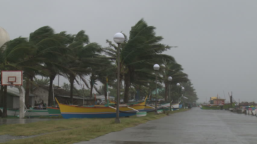 Palm Trees And Fishing Boats Sway In Hurricane Winds - Full HD 1920x1080 30p