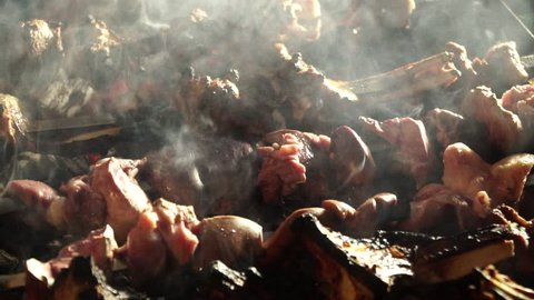 Slow motion. Cooking barbecue. Fresh meat roasted on coals. Outdoor recreation.