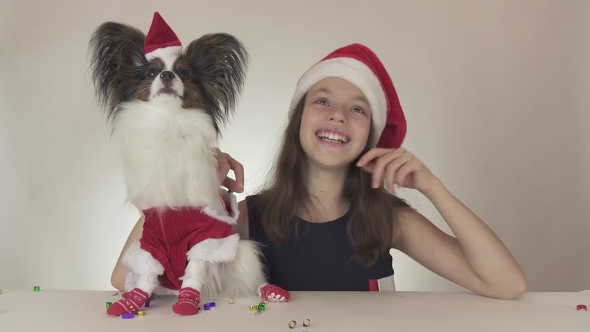 Dogs and teens videos