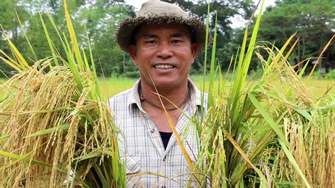 Happy Thai farmer smile after rice harvest in organic agriculture rice field farm in Chiang Mai ,Thailand