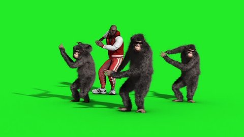 Group Chimpanzee Man House Dance Dancer Green Screen 3D Rendering Animation Animals