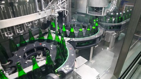 Bottles of green color move along conveyor at the factory of champagne wines. Empty bottles filled with champagne, clogged with a stopper. Conveyor in the factory of champagne. Champagne Manufactory.