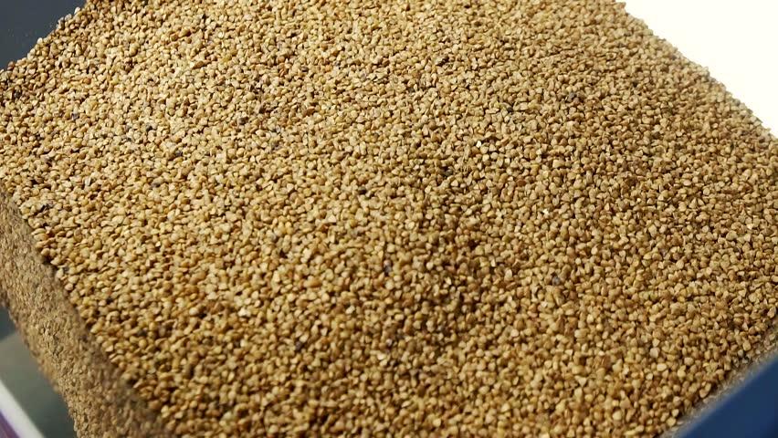 Buckwheat in a tank, background slow mo | Shutterstock HD Video #33342337