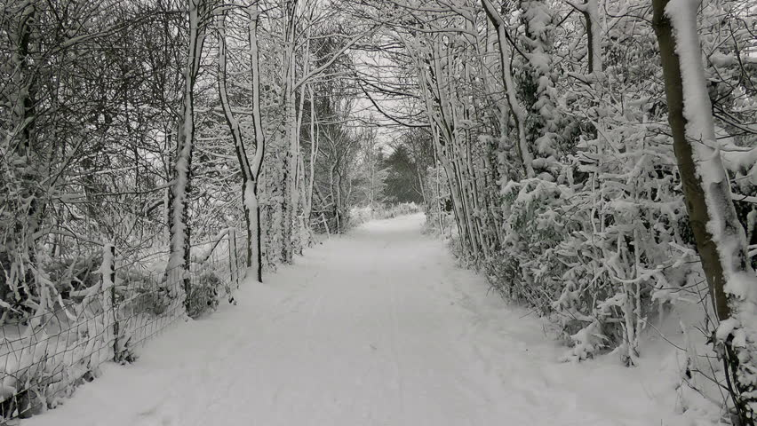 Winter Country Lane.