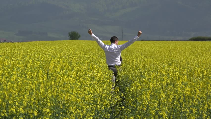 Elegant man with back running in blossom rape field, raising up hands, successful