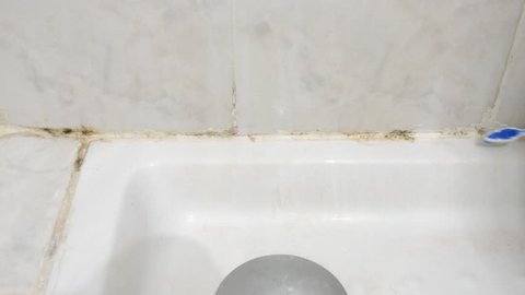 Cleaning moldy tile with a toothbrush at bathroom