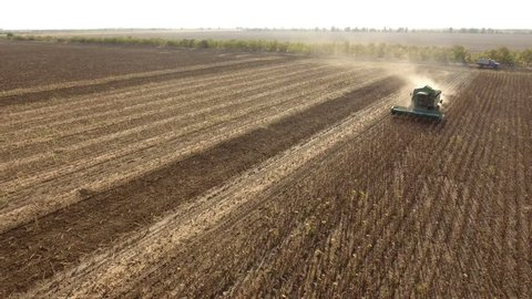 Nikolaev, Ukraine - September 29, 2017:An impressive view of sunflower harvesting by a modern combine harvester in summer. The agricultural field is huge and picturesque.
