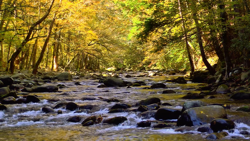 A river flows over rocks in this beautiful scene in the Tennessee mountains in autumn | Shutterstock Video #3363962