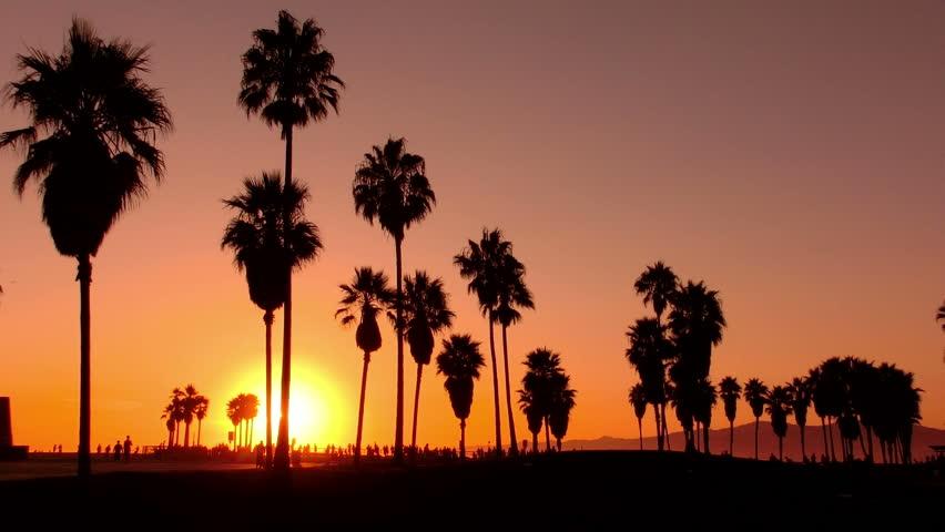 Sunset Beach 14 Silhouette Venice California