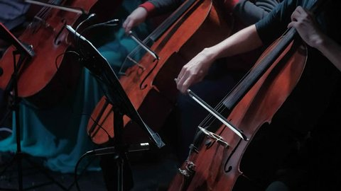 symphonic orchestra cello play in a large hall 4k