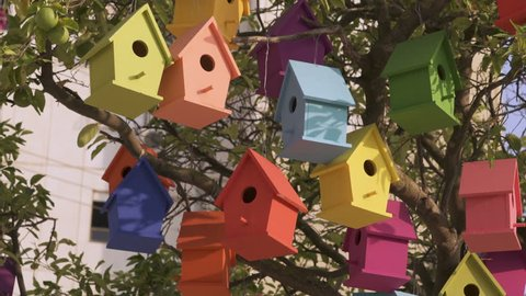 Colorful Wooden Bird Houses On the tree. Illustrate housing problem and mortgage loan