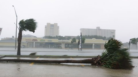 Hurricane Damage in Coastal Town
