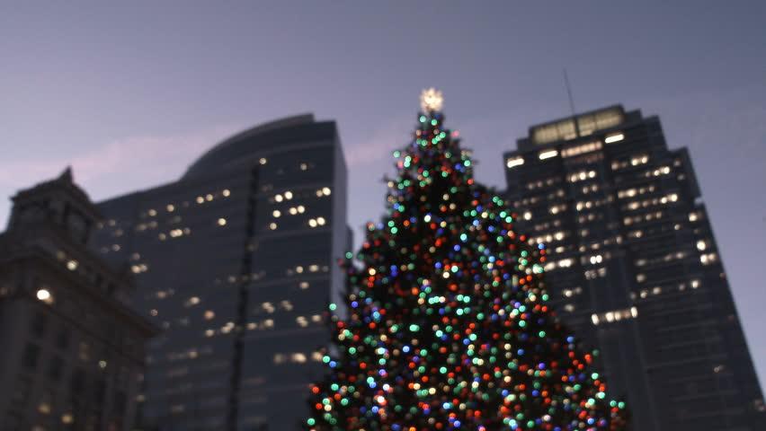 Portland Christmas Tree.Huge Christmas Tree Lights Up Stock Footage Video 100 Royalty Free 33923197 Shutterstock