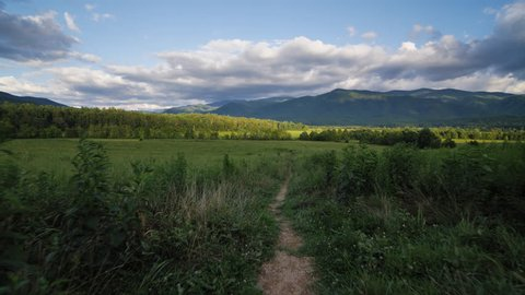 A beautiful tracking shot of Cades Cove in late afternoon near sunset and golden hour as the camera follows a trail into a vast meadow in a green valley of the Great Smoky Mountains in Tennessee.