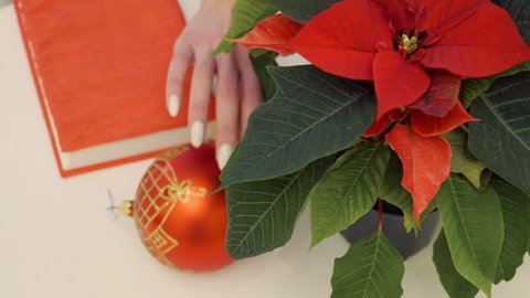 Poinsettia with Christmas toy at the table