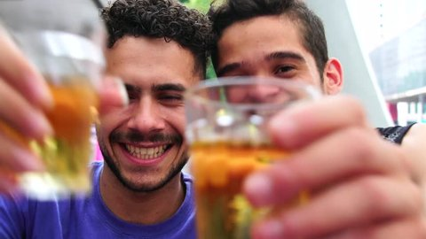 Homosexual Couple Raising a Toast with Beer in Bar