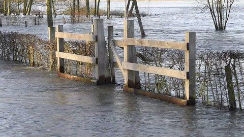 Flood in Deventer at the river IJssel in Gelderland near park Worp.