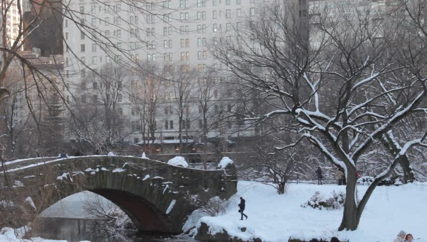 new york central park snowibg