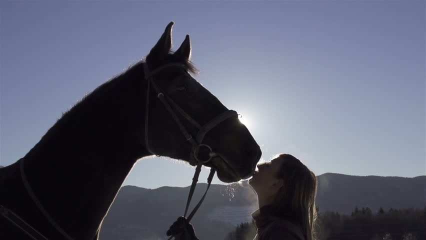 CLOSE-UP: silhouette of a girl kissing her horse on the nose