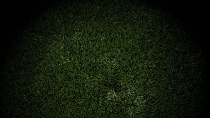 Superieur 3D Animation Of A Soccer Ball Bouncing On Grass And Settling To Accommodate  Text Or A