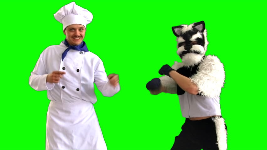 cat and cook dancing on a green background happy dance