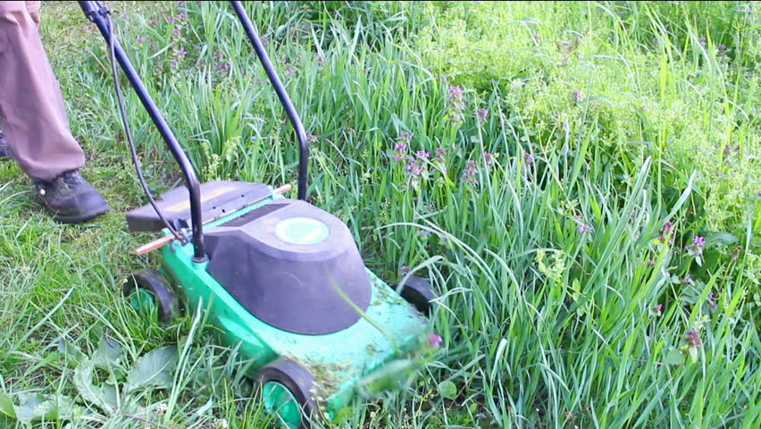 Mowing the lawn ; Gardener mowing the lawn with electric lawnmower,video clip