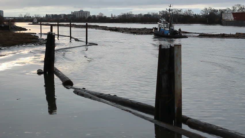 Tug Boats and Log Boom on the Fraser River. Early morning on the Fraser River as tug boats maneuver a log boom up river. Vancouver, British Columbia, Canada.
