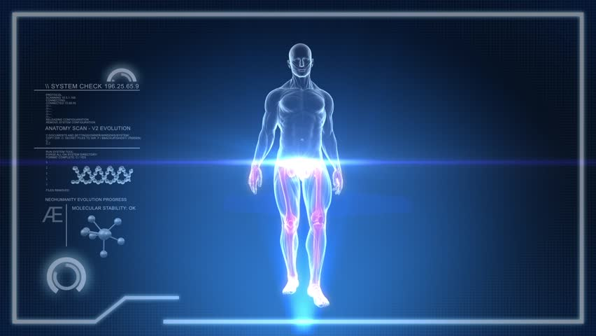 Human Anatomy Walking With Touch Screen Scan In Royalty Free Video