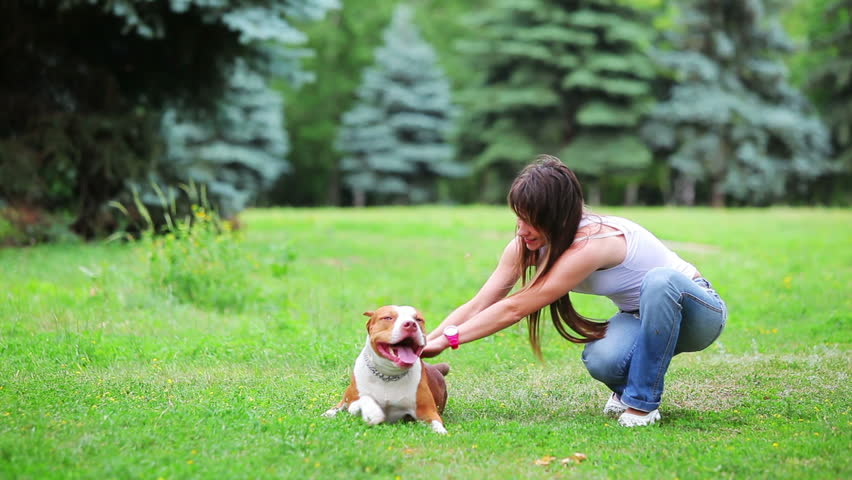 Woman with her beautiful dog playing outdoors, pit bull terrier