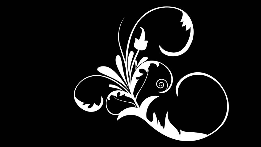 Growing Flower Ornament Vector Design Stock Footage Video