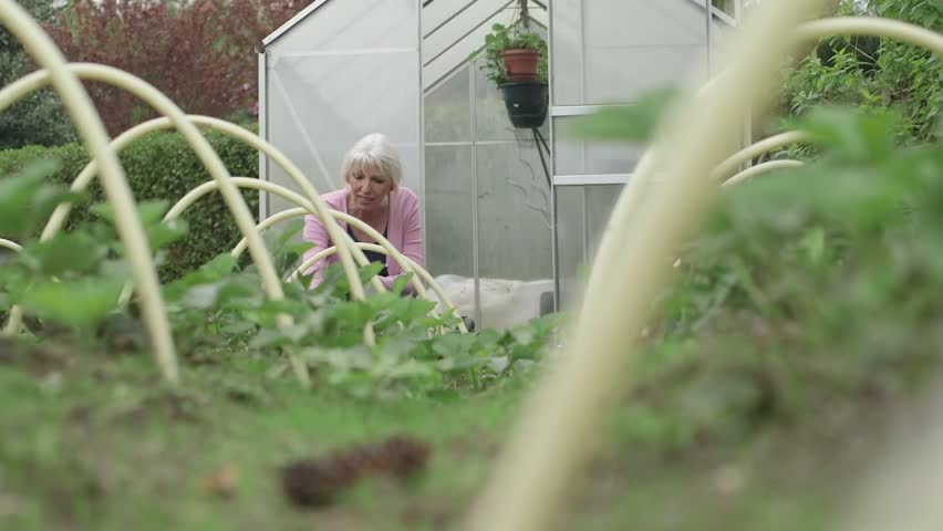 Woman working in garden outside greenhouse