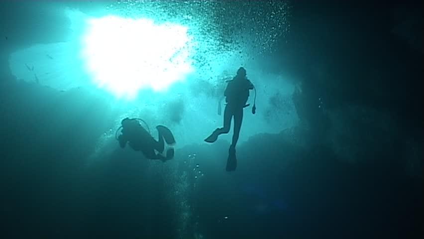 Sea life | Shutterstock HD Video #421867