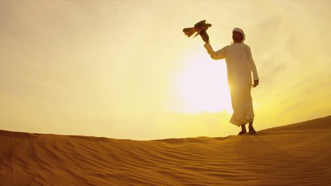 Arabic male white headdress desert sand sunset with trained Peregrine falcon on gloved wrist shot on RED EPIC
