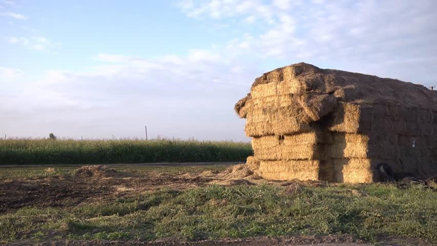 Hay on the farm | Shutterstock HD Video #4352207
