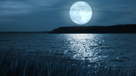 Full moon night landscape with forest lake.