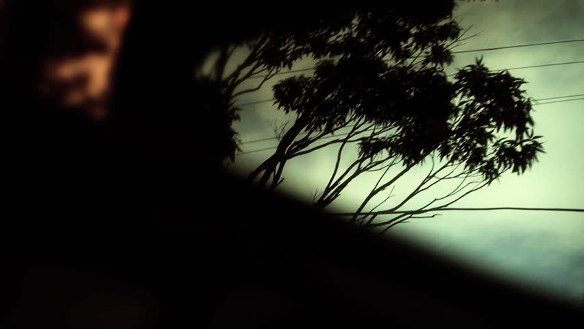 Car mirror reflection, trees and sky driving, slow motion #4480877