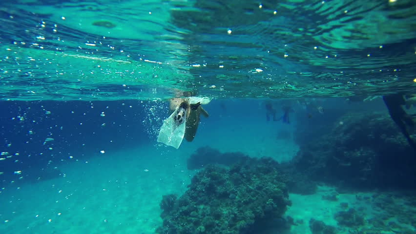 Following someone in underwater