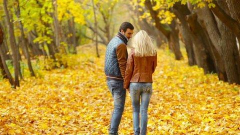 Romantic Couple Walking Across the Stock Footage Video (100 ...