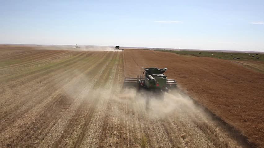 Five combines harvest large canola field on Saskatchewan prairie