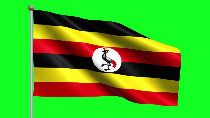 Flag Of Uganda Animation Loop | Shutterstock HD Video #5009327